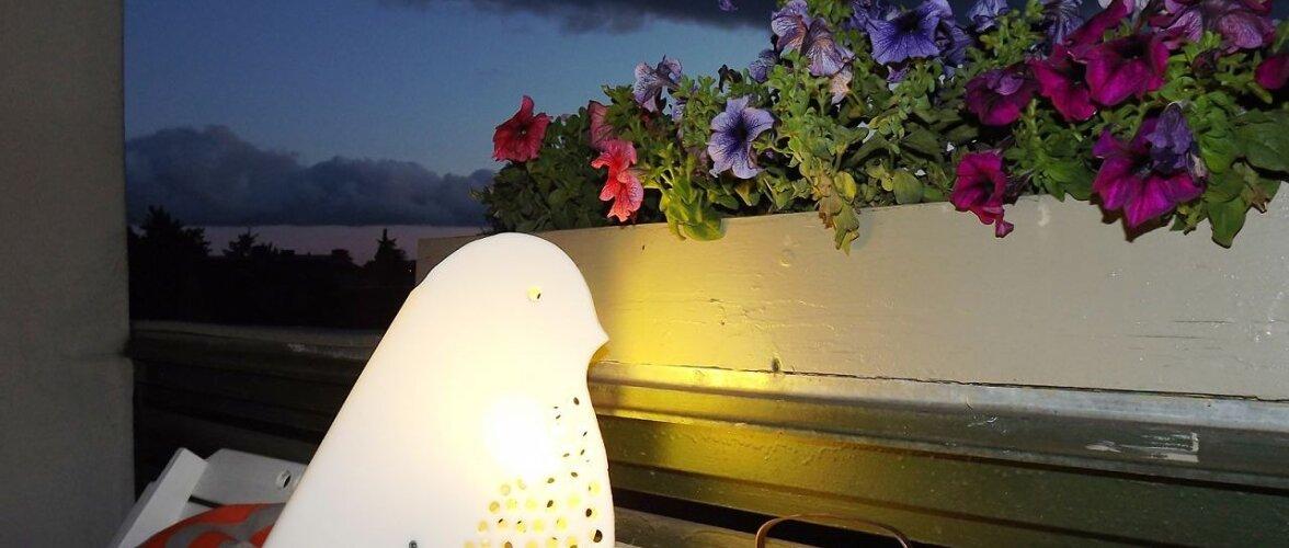 Meisterda linnukujuline valgusti, mille valgusvihk kumab sumedas õhtus