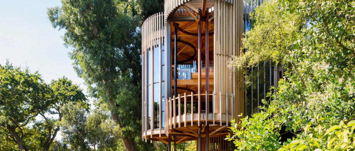 Ultramoodne maja, mis on inspireeritud ürgsest loodusest