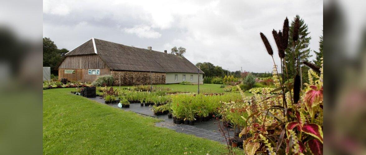 Ohoo preemia pälvis Nõrga aiandustalu