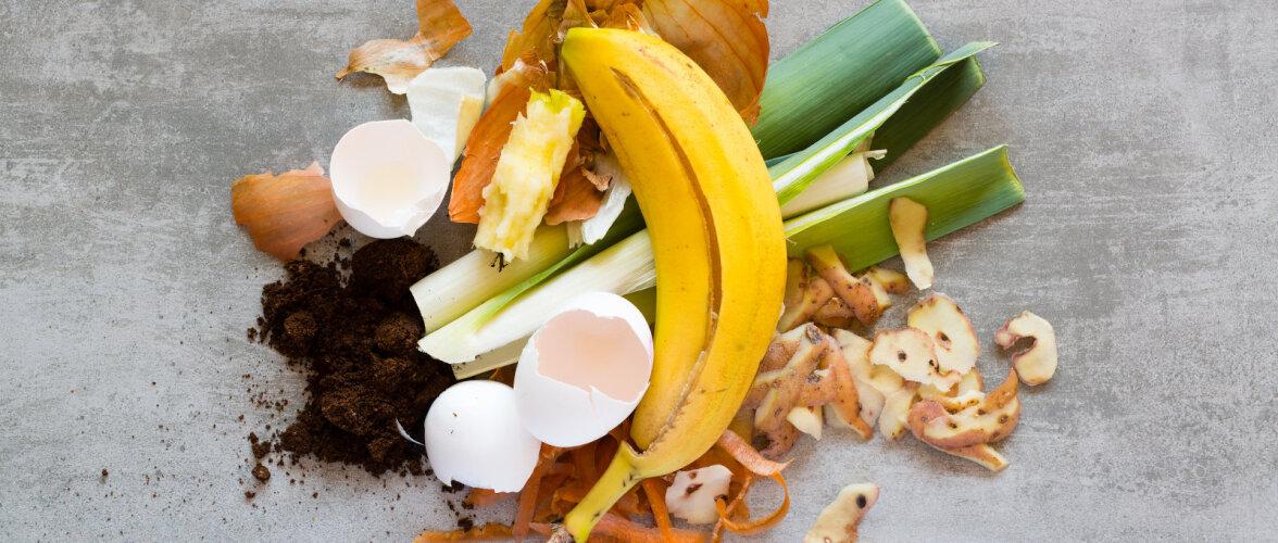 PUUST JA PUNASEKS | Mida võib ja ei või kompostihunnikusse panna?