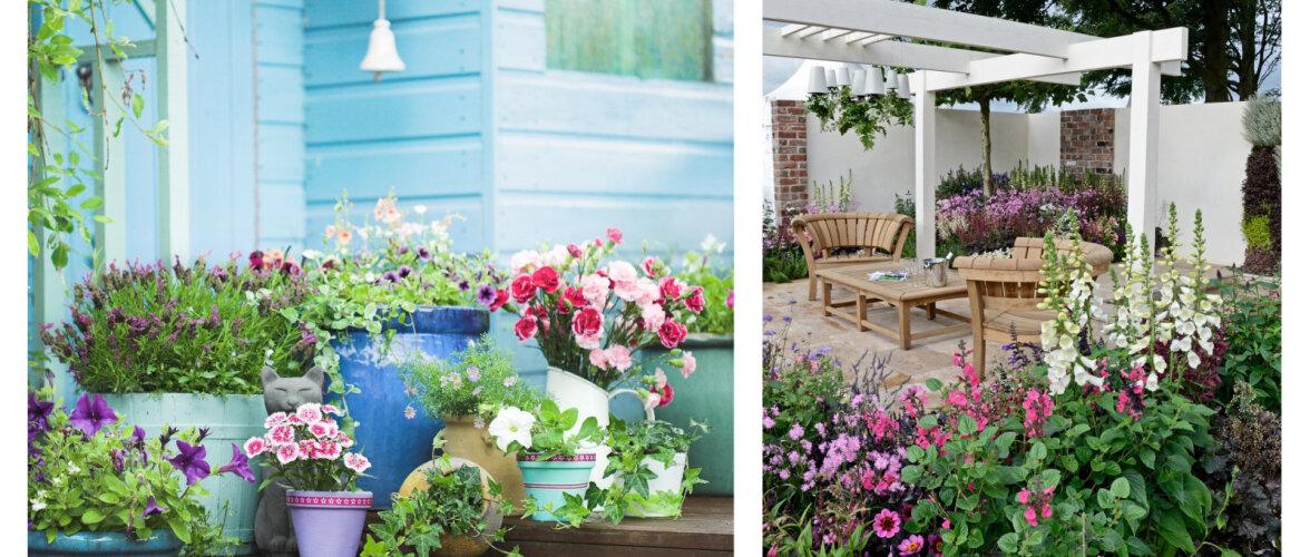 FOTOD   Inspireerivaid ideid, kuidas terrass suvelilledega kauniks sättida