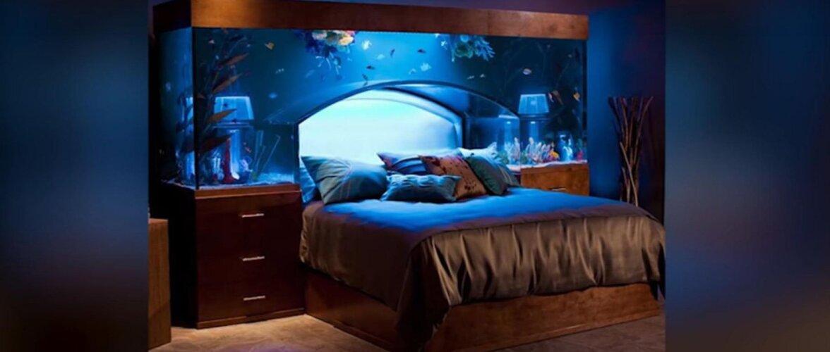 Akvaariumiga voodi. Põnevad kujundusideed ja lahendused, mis muudavad sinu kodu ainulaadseks