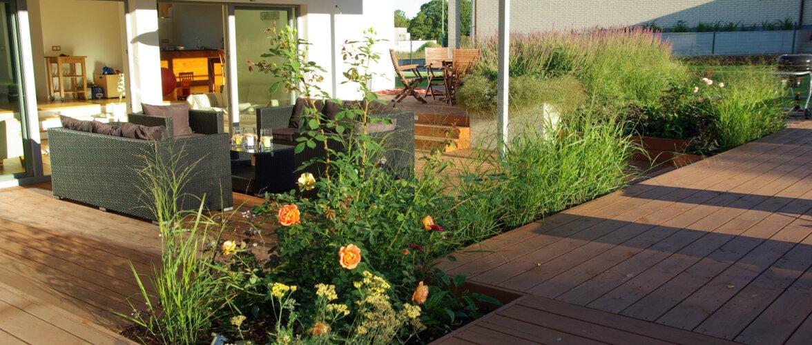 AIADISAINER: Kuidas kujundada aeda — aiakujunduse 10 momenti