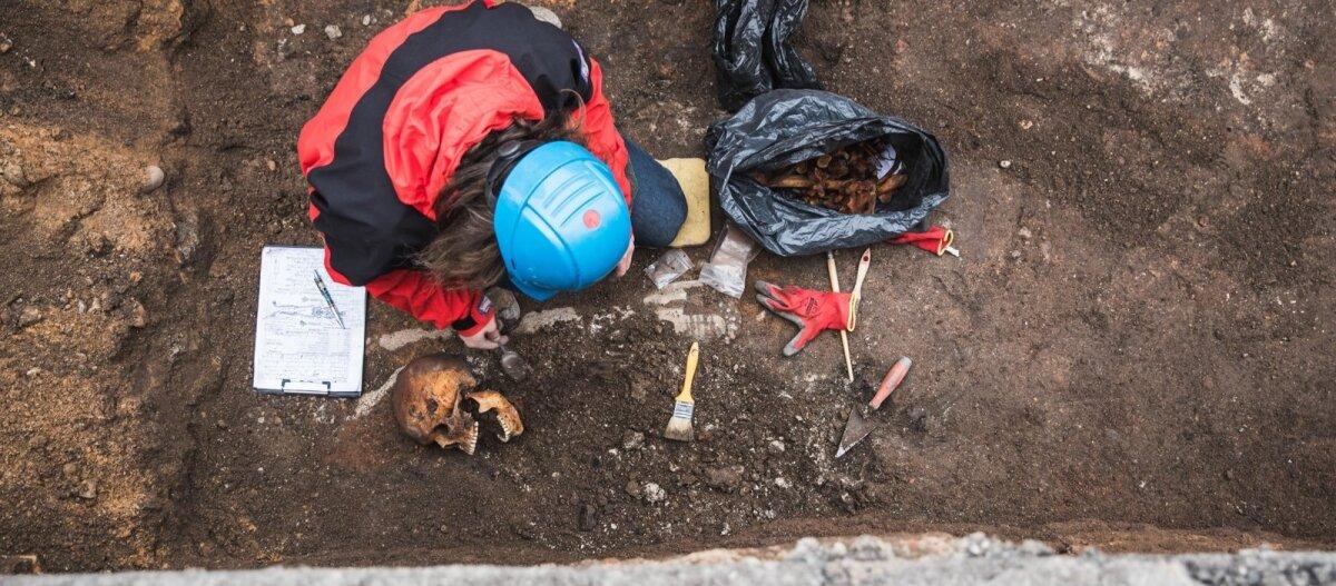 """В Европе прошли десятки обысков и арестов по делу """"черных археологов"""". Пока они раскапывали древности экскаваторами, полиция следила за ними с дронов"""