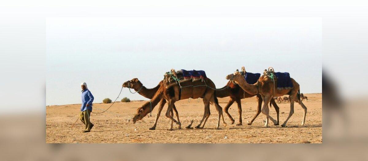 Tuneesia tundmaõppimist alusta Sahara kuumast hingusest