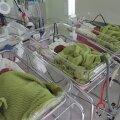 ФОТО | Смотрите, какие милые! В Ида-Таллиннской центральной больнице родились тройняшки Анни, Анна и Ити