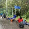 Мигранты на литовско-белорусской границе