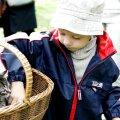 Lemmiklooma võtmine on vastutus kogu tema eluajaks