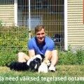 VIDEO | Ott Lepland ja nunnud kutsikad kutsuvad tähistama Tallinna loomade varjupaiga sünnipäeva