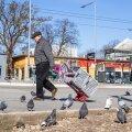 PÄEVA TEEMA | Eero Kosk: ei ole vaja viia linde söötvaid tädikesi 9600 eurose trahviga infarkti äärele