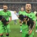 Koerad ja sportlased jalgpalliväljakul
