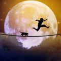 Miks me unes põgeneme? Kuidas mõista unenäo keelt?