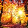 Täiskuu võimendab sügisese pööripäeva maagilist mõju