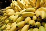 Armastad banaane? Naudi neid, kuni saad, sest viie aasta pärast võivad banaanid olla väljasurnud
