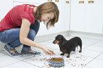 Loomaarst annab nõu: Pärast lõikust tuleb toiduvalikuga ettevaatlik olla