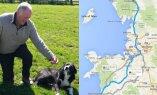 Väike ime: koer rändas mitmesaja kilomeetri kauguselt koju tagasi