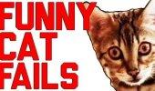 HITTVIDEO: Rahvusvaheline kassipäev! Vaata ja naera nurrumootorite kõige eepilisemate ebaõnnestumiste üle