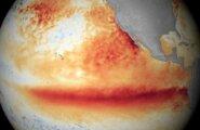 Эль-Ниньо обещает голодный год миллионам жителей Земли