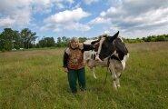Ühe lehmapidaja Geete  Kotka  Kalajaagu talus, Tiskres