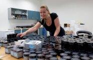 На эстонском рынке бум производства косметики