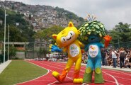 Медики требуют перенести Олимпиаду-2016 из-за вируса Зика