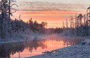 ФОТО: Вот это красота! Любуйтесь лучшими зимними пейзажами Эстонии