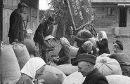 Elu Tartumaa kolhoosis Võimas Jõud. Parasjagu antakse talunikele teravilja-avanssi (200 grammi normipäeva kohta).