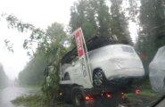 ФОТО читателя: На перевозивший новые Mercedes автовоз упало дерево и другие последствия грозы в Пылвамаа