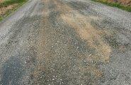 Talunik takistas veokit, mis hoolimata koormuspiirangust kasutas teed raske palgikoorma vedamiseks