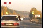 ВИДЕО: На Урале медведя перевозят на заднем сиденье легковушки