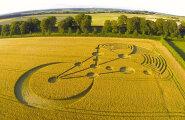 Ajaloolane: viljaringid ei ole pettus, vaid uurimist väärt fenomen