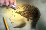 Nutiseadmete pidev kasutamine viib aju mandumiseni