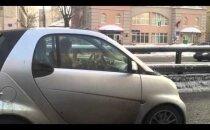 Muhe VIDEO: Sa üllatud, kui näed, millega see naine sõidu ajal tegeleb