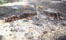 ФОТО: В районе аэропорта было обнаружено большое количество боеприпасов