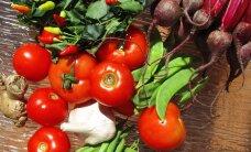Astroloogiline toitumine: mida sinu tähemärk kindlasti sööma peab?