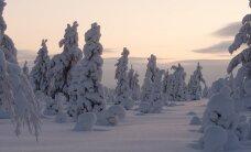Ilmarekorditest: tänavu möödub 90 aastat sellest, kui Eestis sadas maha rekordpaks lumi