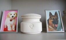 В столичном районе Нымме открывается первый в Таллинне крематорий для животных