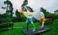 """Союз пищевой промышленности при помощи """"суперкоровы"""" призывает к употреблению молока"""