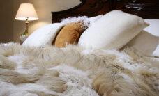 Sügishooaja kuumim trend — kudumid ja karusnahad interjööris