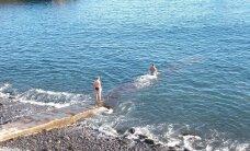 MAALEHT MADEIRAL: Suur küsimus – kuidas saaks Funchalis ookeani ujuma minna?