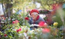 Lillelaada veteran Helju edendab eksporti