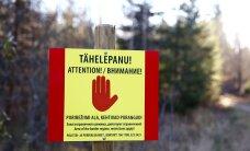 СМИ: в таможенном скандале в Петербурге найден эстонский след