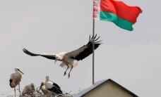 Белоруссия вводит безвизовый режим для граждан ЕС, правила распространяются и на серопаспортников