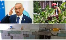 ГЛАВНОЕ ЗА ДЕНЬ: Ужасы общежития ТУ, спящий водитель и дерево-убийца