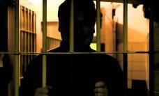ГЛАВНОЕ ЗА ДЕНЬ: Неожиданно для себя можно стать преступником, бизнес Ильвеса