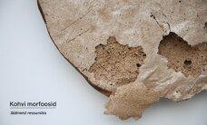 Kohvimorfoosid: jäätmetest uueks materjaliks