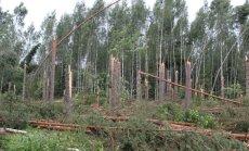 Lõuna-Eesti äikesetorm kahjustas tugevalt ka riigimetsa