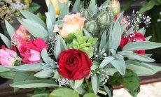TEEME ISE: Lillekimp, millest on ka kasu