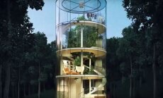 VIDEO: Maailma kõige ägedam ümber puu ehitatud klaasist maja