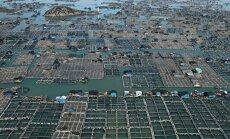 Плавающие рыбные фермы Китая